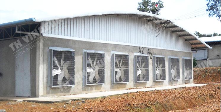 quạt thông gió trang trại chăn nuôi